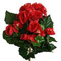 Kunstblume/Seidenblume Begonienbusch mit 72 Blüten