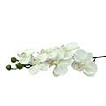 Kunstblume/Seidenblume Orchideen-Rispe