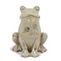 Frosch Zoloto