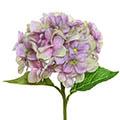 Kunstblume/Seidenblume Hortensie
