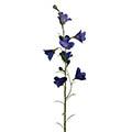 Kunstblume/Seidenblume Campanula-Glockenblume