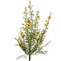 Kunstblume/Seidenblume Ginsterbusch mit Blüten
