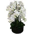 Kunstblume/Seidenblume Phalaenopsis-Orchidee mit 19 Zweigen im Erdballen