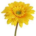 Kunstblume/Seidenblume Gerbera mini