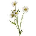 Kunstblume/Seidenblume Margerite mit 6 Blüten und Knospen