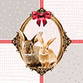 Serviette Bunny Friends