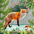 Serviette Fox Portrait